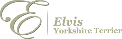 Elvis Yorkshire Terrier Logo
